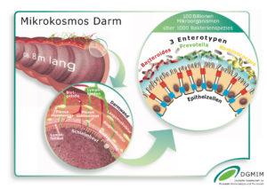 Beim Reizdarm ist die Darmflora (s. Bild) gestört